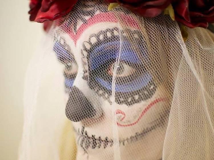 Visite de l'Institut Culturel Mexicain