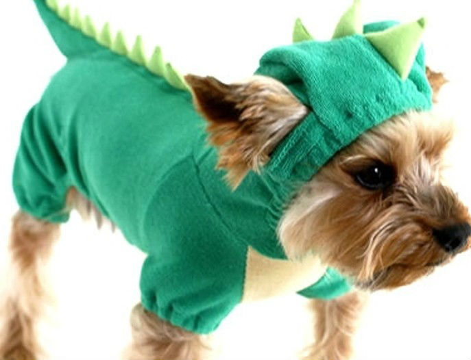 Check out 2014's top pet Halloween costumes