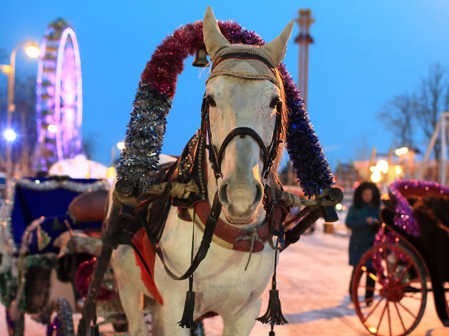 Your guide to Winterville