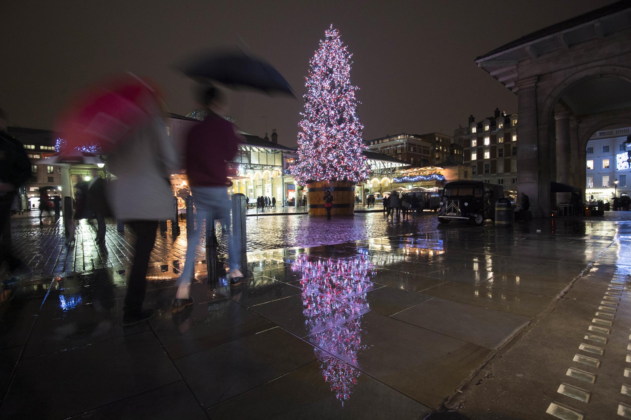 Covent Garden Christmas tree 2014
