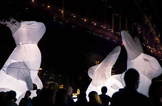 Rabbits at the Southbank Centre Winter Festival