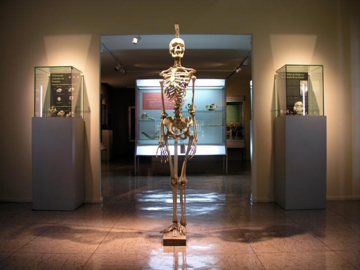 Los 11 museos más curiosos