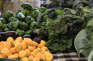 Green City Market Fulton