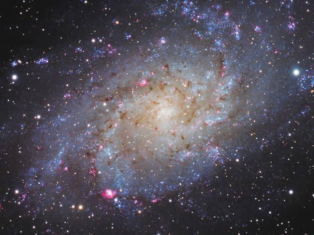 Noche astronómica