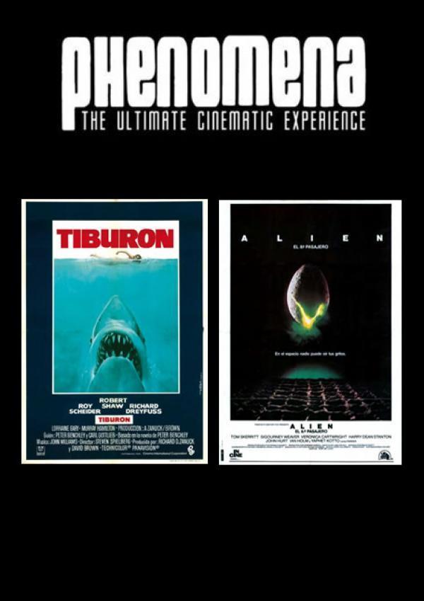 Phenomena Experience