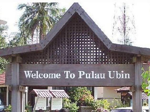 Nature Walk at Pulau Ubin Sensory Trail