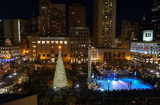 Great Tree Lighting