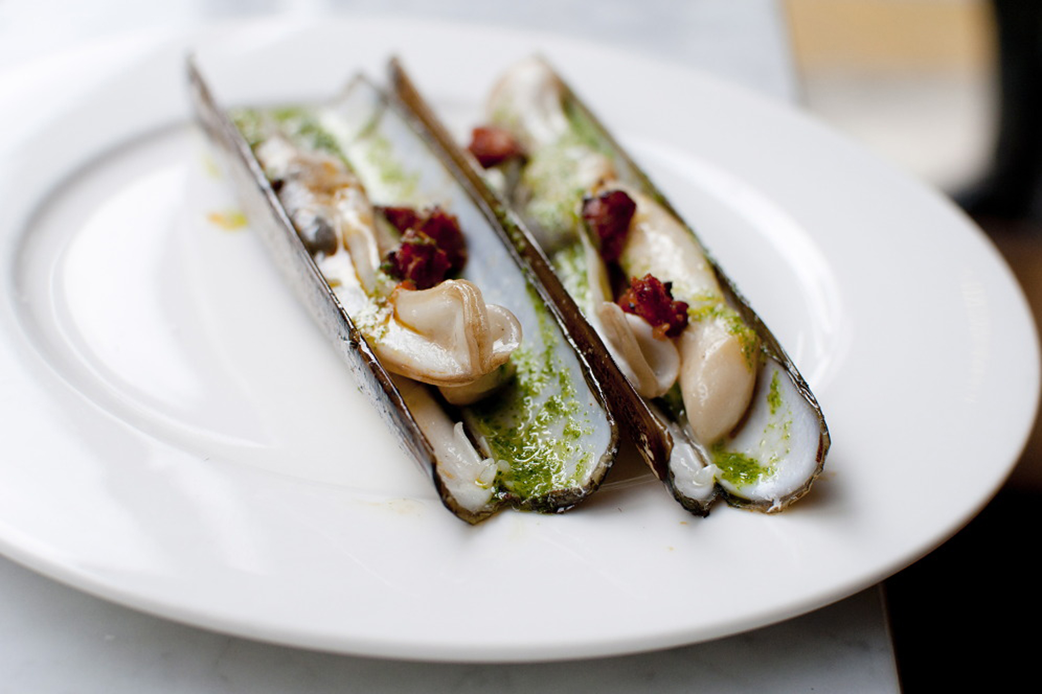 Grilled razor clams at José