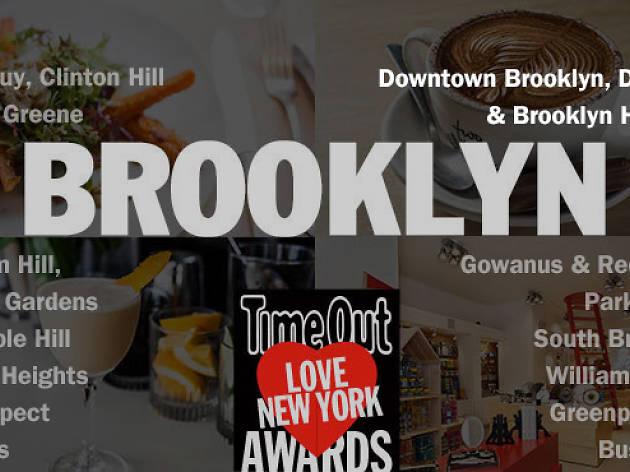 TOLNYA 2014, Downtown Brooklyn DUMBO & Brooklyn Heights header
