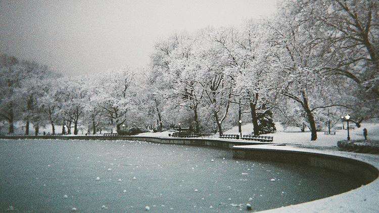 Photograph: Courtesy Creative Commons/Flickr/Ralph Hockens