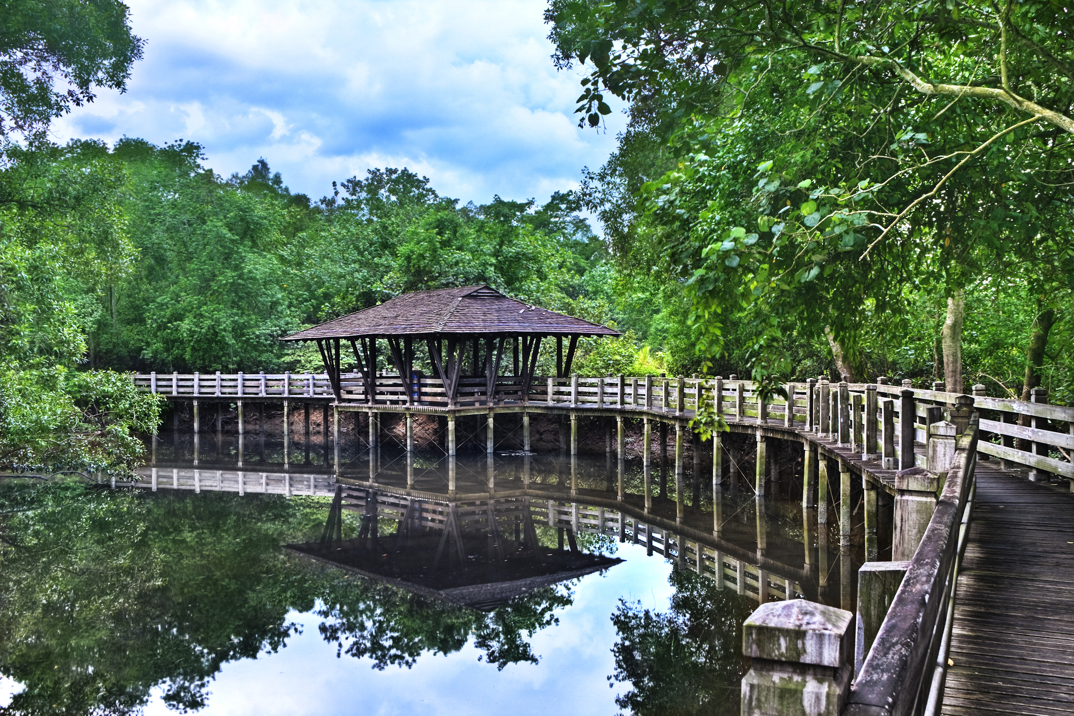 Return to nature at Sungei Buloh Wetland Reserve