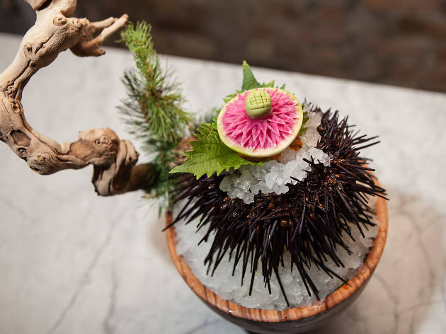 Live uni is on the menu at Momotaro, one of the best West Loop restaurants.