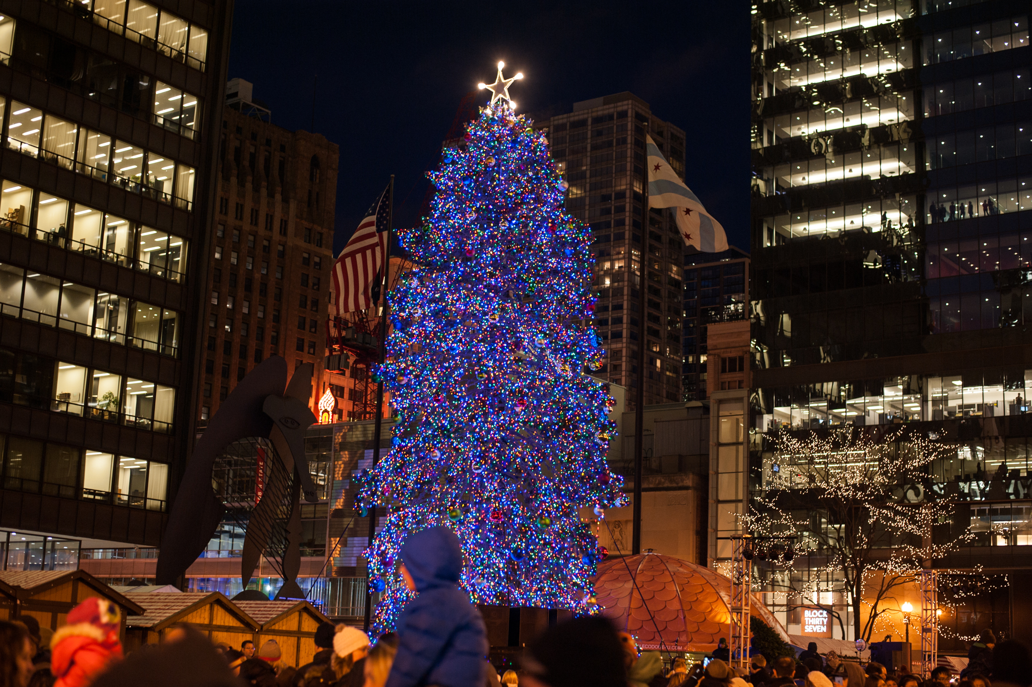 Photos: Daley Plaza tree lighting