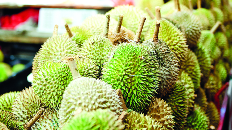 Learn to love durian