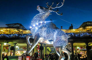 Covent Garden reindeer