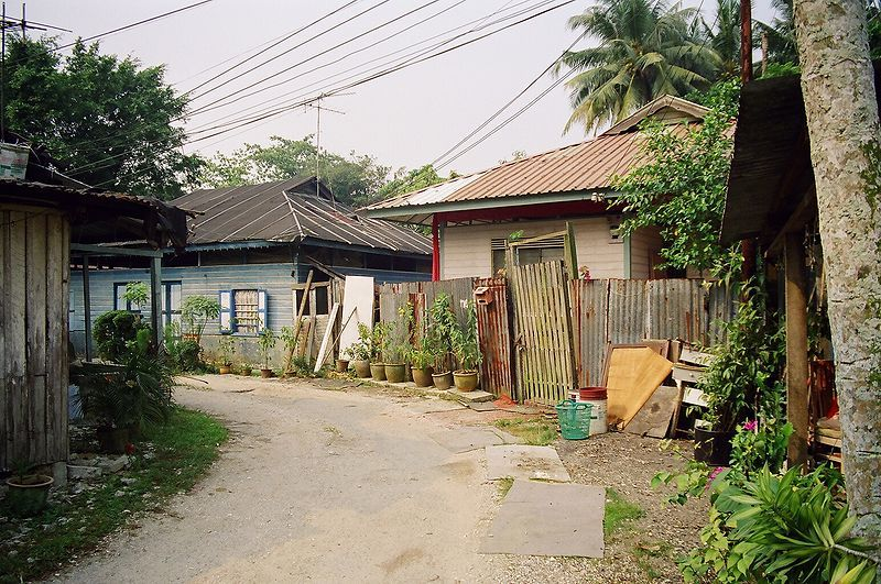 Visit Singapore's last remaining kampong to take in the sights