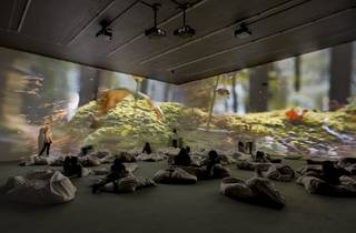 Pipilotti Rist (Installation view  'Pipilotti Rist. Worry Will Vanish', Hauser & Wirth London, 2014)