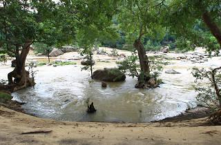 Gal Oya National Park