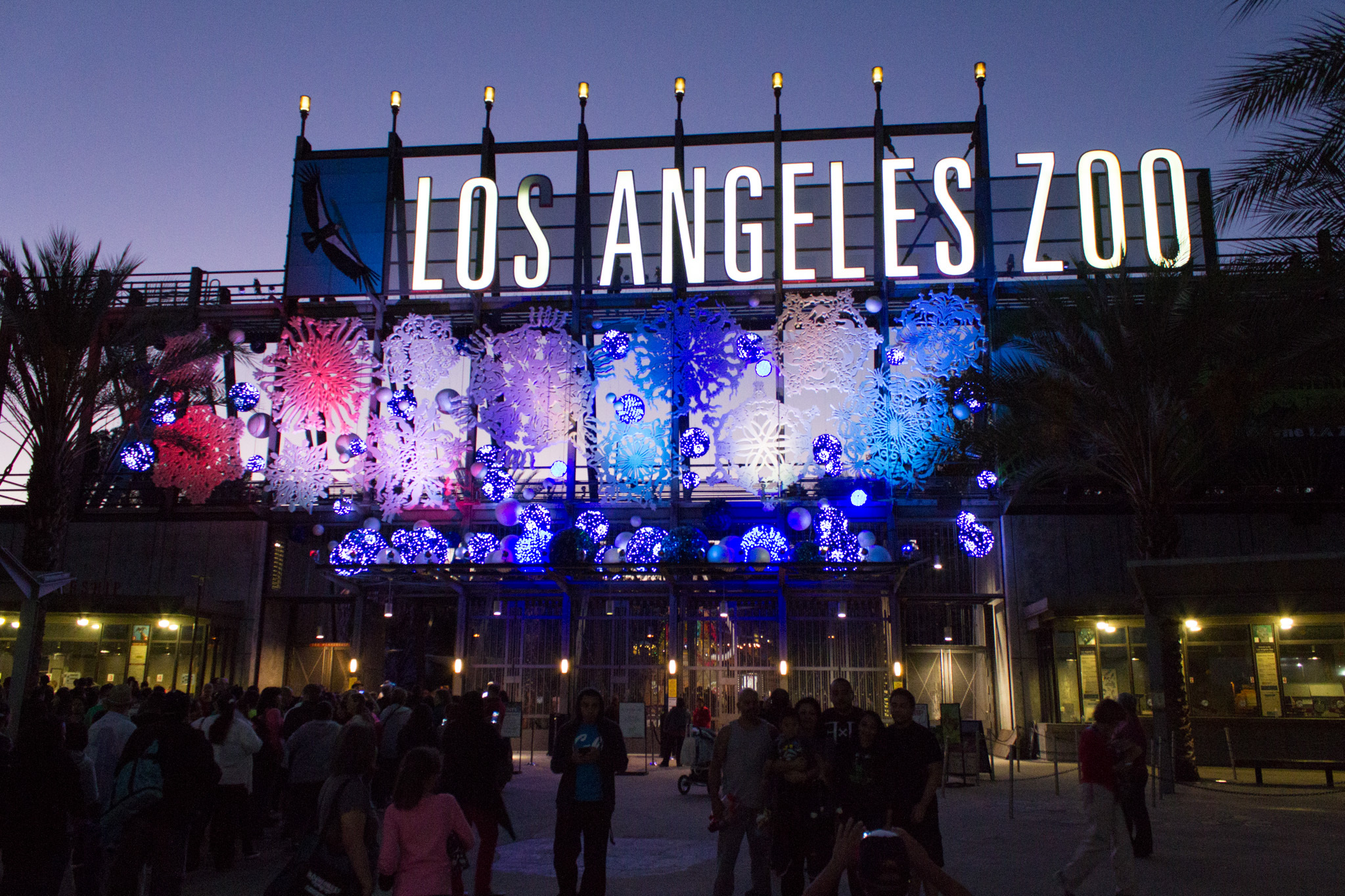 LA Zoo Lights