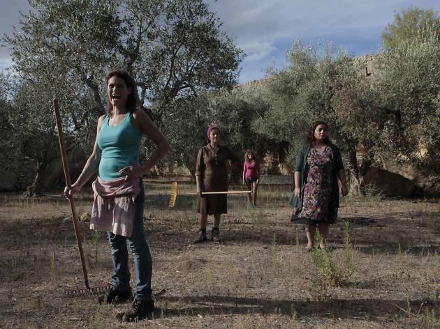 Mostra de Cinema Italià de Barcelona 2014: In grazia di Dio