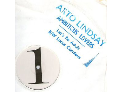 """""""Let's Be Adult"""" by Arto Lindsay"""