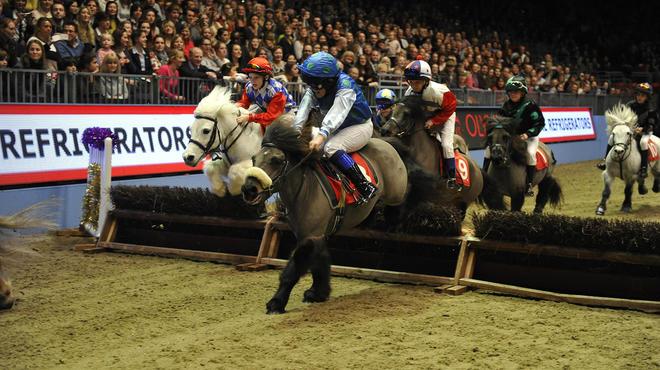 Olympia, The London International Horse...