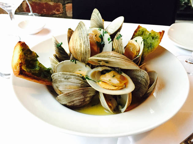 Steamed Little Necks at The Clam
