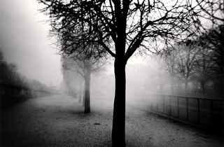 (Michael Kenna, 'Tuileries Gardens', Paris, France, 2004 / © Michael Kenna / Musée Carnavalet)