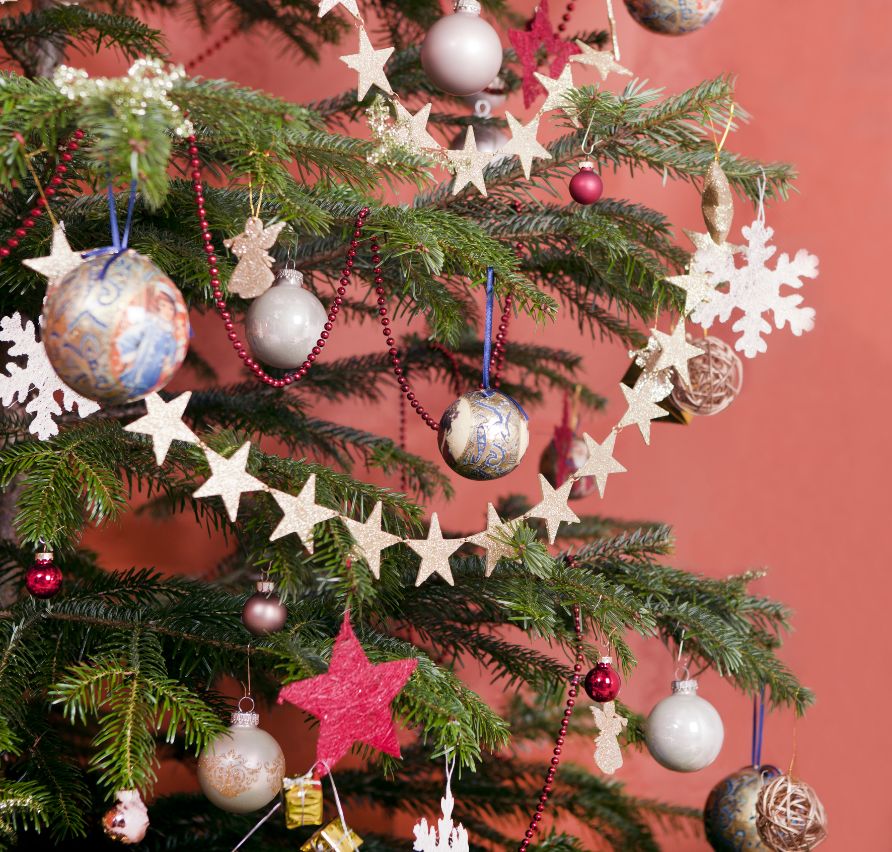 where to buy christmas trees in kl - Buy Christmas Tree