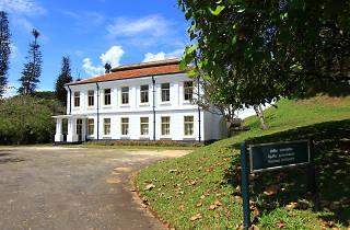 The National Herbarium