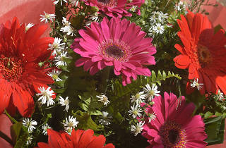 Sterling Flowers is a flower shop in Colombo