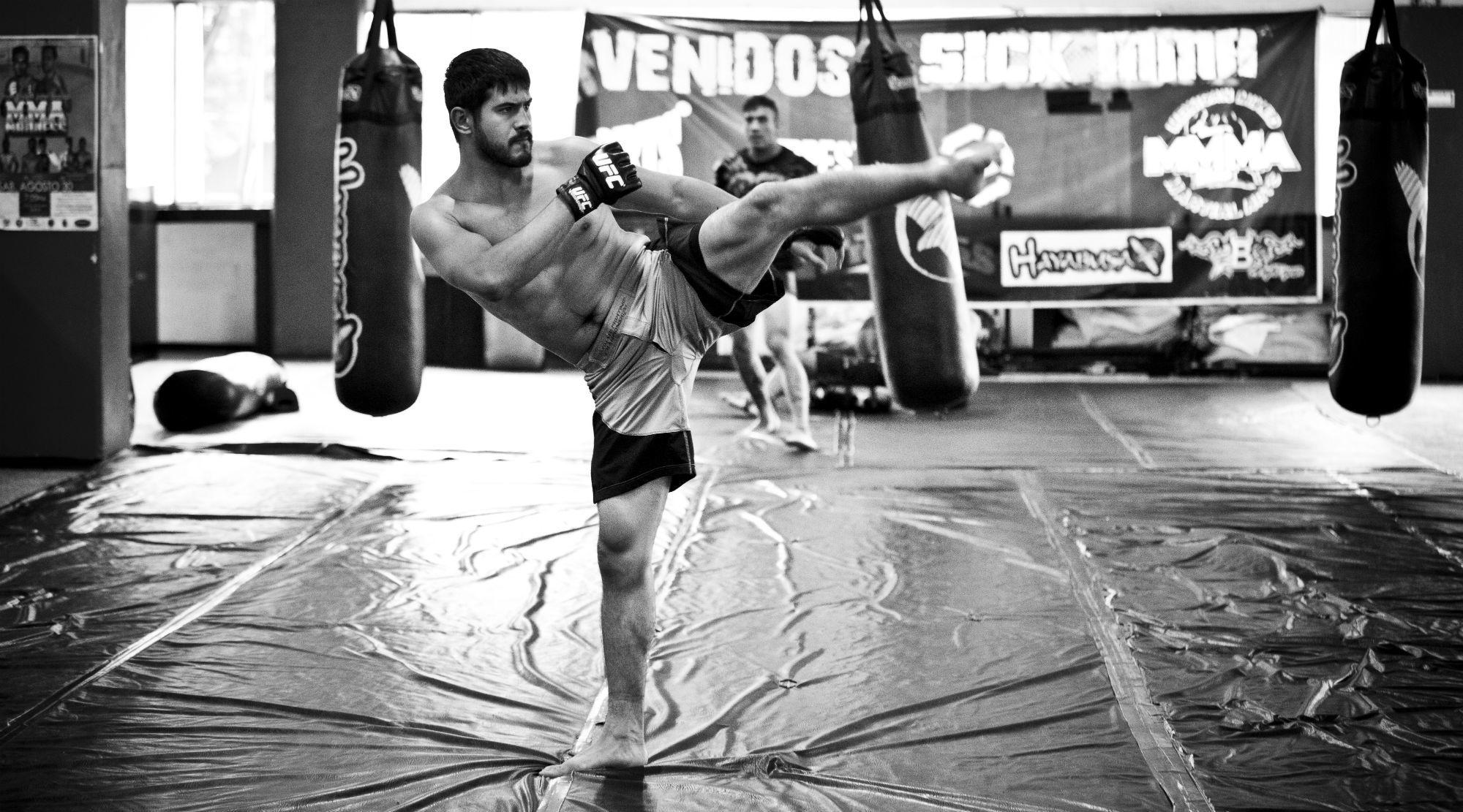 MMA: Artes marciales mixtas
