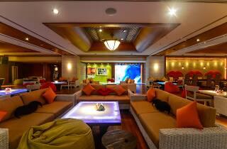 F.I.P. Lounge