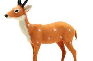Fauna que fa Nadal