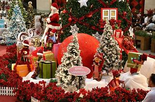 Pavilion's Christmas Magnificence