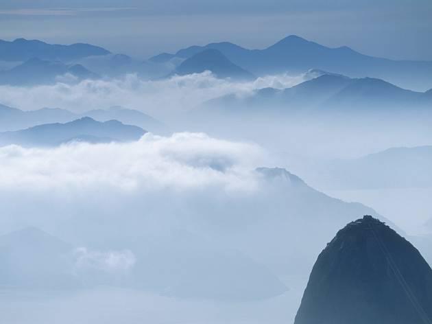 Rio (© Steve Davey)