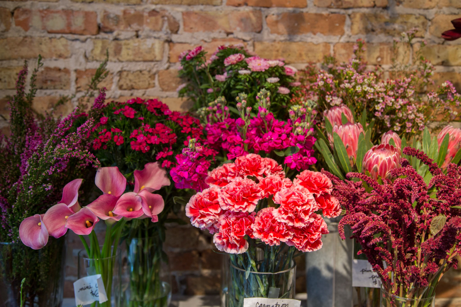 The best Chicago flower shops