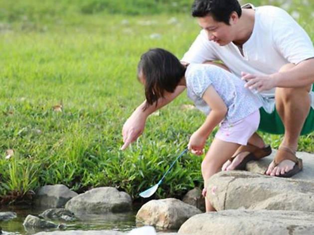 Ecolife tour of Bishan-Ang Mo Kio Park