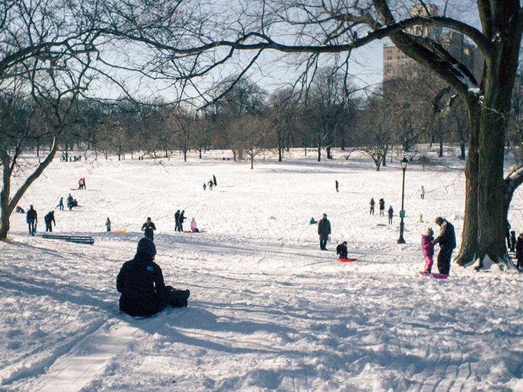 Curling at Prospect Park