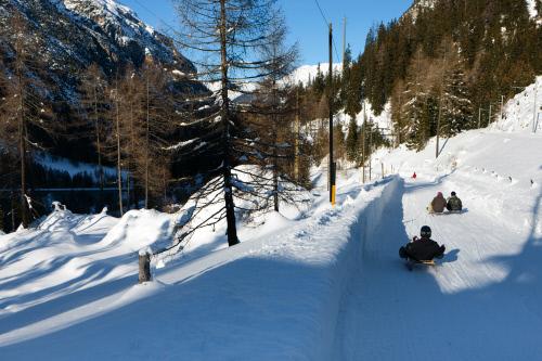 Preda – Bergün toboggan run