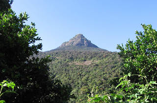 Adam's Peak is a popular religious site in Sri Lanka