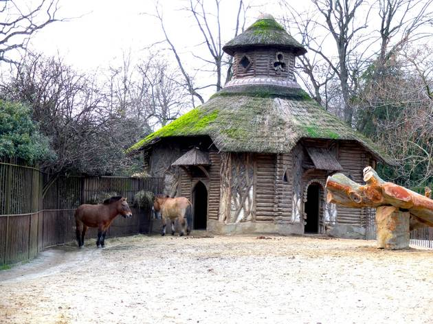 Chevaux de Przewalski (Ménagerie du Jardin des Plantes / Photo : © TB / Time Out)