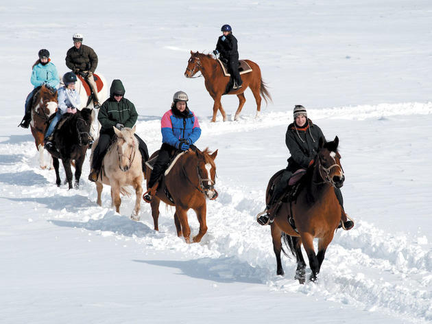 Family winter vacation ideas in the Midwest