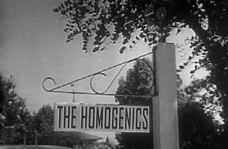 Pantalla CCCB. Un mes un artista: The Homogenics