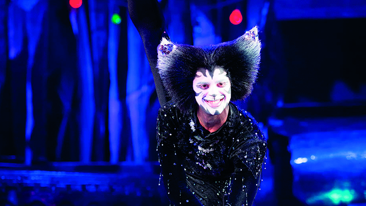 Christopher Favaloro as Mr Mistoffelees
