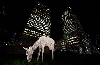 Winter Lights Exhibition Canary Wharf 2015