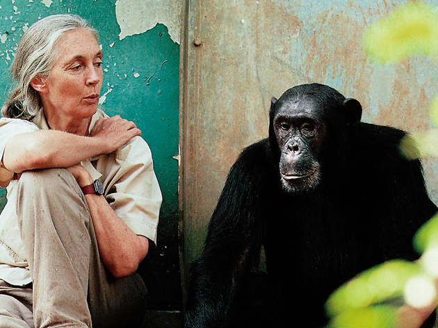 Finding Life's Passion: A talk by Dr Jane Goodall