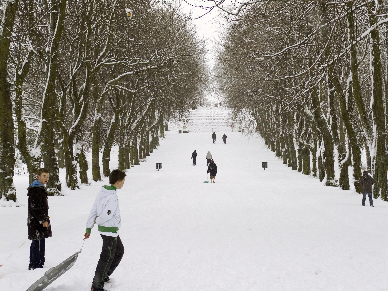 Queen's Park sledgers
