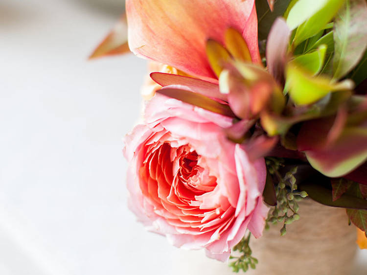 A flower shop guide to San Francisco