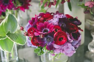 Table & Tulip